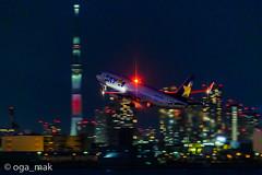 MAK-3540 (oga_mak) Tags: makogawauchi ogamak 東京都 日本 500mm eos eos1dxmarkii canon myeosphoto airport aircraft airplane aviation aviationphotography boeing b738 boeing737 airways skymarkairlines hanedaairport hikoukiclub everybodyphoto キヤノン 羽田空港 飛行機撮り隊 飛行機大好き 飛行機写真 飛行機のある風景 飛行機倶楽部 飛行機 写真好きな人と繋がりたい カメラ好きな人と繋がりたい エビフォト mytokyois