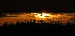 Sunset 20-01-01 (robinlamb1) Tags: nature outdoor sunset dusk sundown aldergrove bc first yeardecade