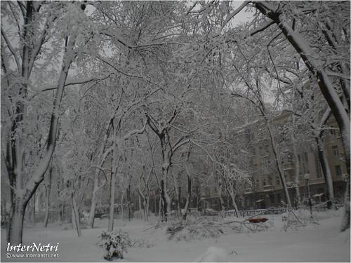 Київ у снігу. 2012 044 InterNetri Ukraine