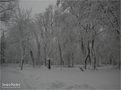 Київ у снігу. 2012 042 InterNetri Ukraine