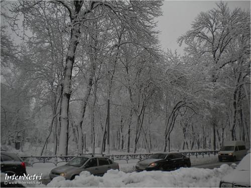 Київ у снігу. 2012 037 InterNetri Ukraine