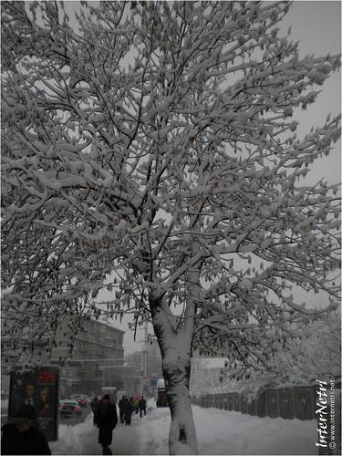 Київ у снігу. 2012 034 InterNetri Ukraine
