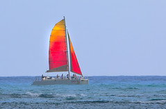Holokai Catamaran (ashockenberry) Tags: wild pacific sail catamaran red beautiful evening ocean hawaii holokai boat travel tourism surf sand beach waikiki oahu people fun sport sailing vacation destination ashleyhockenberryphotography