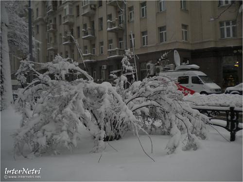 Київ у снігу. 2012 041 InterNetri Ukraine