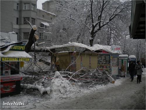 Київ у снігу. 2012 026 InterNetri Ukraine