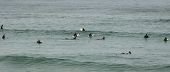 Waiting for the next wave [Explored] (johnstewartnz) Tags: canon canonapsc apsc eos 7dmarkii 7d2 7d canon7dmarkii canoneos7dmkii canoneos7dmarkii 70200mm 70200 70200f28 70200mmf28 ef70200f28lisusmiii canonef70200f28lisusmiii 100canon dunedin stclair stclairbeach surfing otago