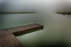 disappearing horizon (stevefge) Tags: 2019 beuningen gelderland mist winter landscape water calm jetty birds reflectyourworld nederland netherlands nl nikon nature natuur