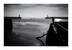 """""""Dans Les Traces Du Poulpe Ou Pour L'Attendrir Faut Taper Dessus... 6"""" (TBWLC Photography) Tags: fdrouet tbwlc nb bw monochrome street saintnazaire penhoët nikon d750"""