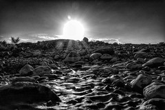 """""""May your sacred star guide you every day of the New Year.""""  ― Lailah Gifty Akita Muscat, Sultanate of Oman (jawaharpinto) Tags: sunshine light heavenly divine bnw inexplore landscape nature motivation inspiration pebbles star sunlight backlight"""
