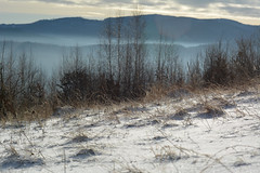 snow (Slávka K) Tags: snow landscape view sunny day january trees forest hils