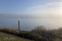 Sunny mist (♥ Annieta ) Tags: annieta december 2019 iphone8plus nederland netherlands zuidholland lekdijk river rivier lek mist nevel allrightsreserved usingthispicturewithoutpermissionisillegal