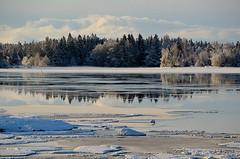 Ljusnan. (johnerlandaxelsson@gmail.com) Tags: ljusne hälsingland sverige vinter natur landskap landscape johnaxelsson