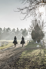 Winter Horse Ride (Robycrux) Tags: 50mm sony touch atmosphere mood winter beauty ride eye soul italy imola cisi ippico circolo stalla byre shed stall stable horse