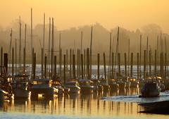 Sunrise At The Harbour (Alan1954) Tags: boats sunrise essex brightlingsea 2019 platinumpeaceaward