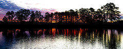 Sunrise on the pond (calmingfocus) Tags: sunrise reflection pondlife morninglight