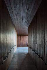 The corridor (jefvandenhoute) Tags: belgium antwerpen nieuwzuid lines corridor
