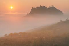_MG_8252.0212.Tân Lập.Mộc Châu.Sơn La (hoanglongphoto) Tags: fog foggy thickgloom misty haze mists mist thickfog hoanglongphoto canoneos5dmarkii mộcchâu sơnla vietnam việtnam sun northvietnam northernvietnam vietnamlandscape scenery vietnamscenery mocchau landscape morning nature asia asian northwestvietnam naturelandscape mocchaulandscape sunrise sky clouds vietnammountainouslandscape forest theforest earlyfrost earlymorningfog fogofmocchau sươngmùmộcchâu bìnhminhmộcchâu mâymộcchâu tâybắc tânlập bìnhminh mặttrời mây sươngmù núi mountain phongcảnhthiênnhiên canonef24105mmf4lisusm cloudsofmocchau skyscape cảnhquanbầutrời mâyluồnmộcchâu