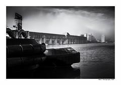 """""""Dans Les Traces Du Poulpe Ou Pour L'Attendrir Faut Taper Dessus... 9"""" (TBWLC Photography) Tags: fdrouet tbwlc nb bw monochrome saintnazaire penhoët port nikon d750"""