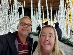 Enchant Christmas (heytampa) Tags: enchantchristmas decorations holidaylights tropicanafield david hey davidhey cheryl fitzpatrick