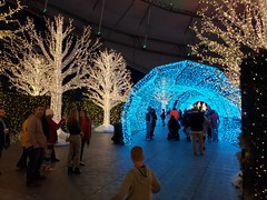 Enchant Christmas (heytampa) Tags: enchantchristmas tropicanafield holidaylights decorations lighttunnel
