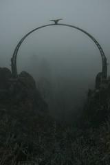 Ein nebliger Morgen/ a foggy morning (kristine211) Tags: ausflug aussicht donnersberg adlerbogen nordpfalz