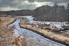 Frozen Stream (KWPashuk (Thanks for >3M views)) Tags: nikon d7200 tamron tamron18400mm lightroom luminar luminar4 k kwpashuk kevinpashuk creek frozen winter landscape outdoors hendrie valley burlington ontario royalbotanicalgardens