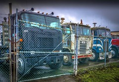 If these brutes could talk..... (Paul Rioux) Tags: semi trucks cabover freight old retired forgotten decayed rust vintage ford kenworth prioux international