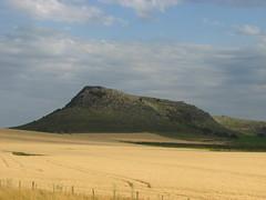 Campos,provincia buenos aires,Argentina !! (Gabriel mdp) Tags: campos contrastes sierras tandil provincia buenos aires paisaje calma tranquilidad