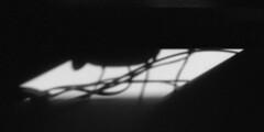 untitled (kaumpphoto) Tags: mamiya nc1000s kodak tmax 3200 bw black white abstract shadow