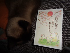 ¡Una postal desde Japón! (esta_ahi) Tags: postal laura japón