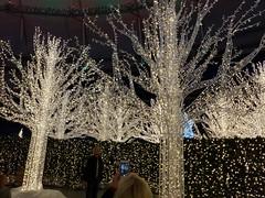 Enchant Christmas (heytampa) Tags: enchantchristmas tropicanafield holidaylights decorations