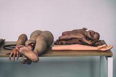 Body Parts (michael_hamburg69) Tags: rotterdam niederlande netherlands südholland holland southholland lapx adamx medicalx shopwindow schaufenster bodyparts humanpatientsimulator
