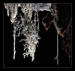 Construcciones minerales... (Sorginetxe (Iñigo Gómez de Segura)) Tags: cueva cave caving cavidad cantabría espeleología espeleofotografía espeleofotografo espeleotemas espelotema estalactita estalagmita excéntricas aragonito kobazuloa kobazulo karst karstification fotografíasubterranea formaciones iñigogomezdesegura ilunpeart speleophotography subterránea fotografiasubterranea macro macrofotografía leizea