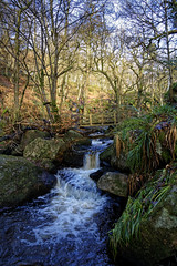 Padley gorge. (S.K.1963) Tags: derbyshire peak district river woods trees stream padley gorge england sky landscape sony a7iii 24 105mm f4