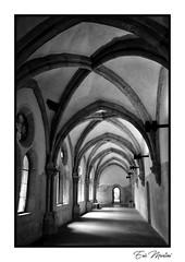 Dans la lumière (litang13) Tags: église church noir blanc bw cloître theunforgettablepictures soe blanckdiamond