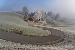 7R404785_s (AndiP66) Tags: sonyfe24105mmf4 emmental valley winter frost hoarfrost sun sonne morgen morning bauernhof farmhouse strasse road schweiz switzerland sony sonyalpha 7rmarkiv 7riv 7rm4 a7riv alpha ilce7rm4 sonyfe24105mmf4goss sony24105mm 24105mm emount sel24105g andreaspeters