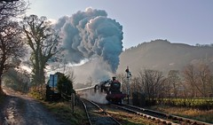 line clear ahead (midcheshireman) Tags: steam train locomotive llangollen signals wales 78xx 7822 foxcotemanor railway