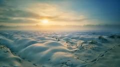 2020 (camerito) Tags: sunset sonnenuntergang field feld sea meer snow schnee fog nebel landscape landschaft camerito flickr