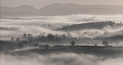 Fog Waves (Alan10eden) Tags: fog mist hills valleys countryside landscape winter inversionlayer ulster countydown northernireland canon5dmkiv alanhopps 70200mmf40is view fields agriculture farming