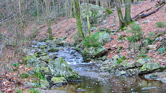 Belgium 2019-12-29: High Fens (filip_claeys) Tags: belgium 2019 december highfens hogevenen hautesfagnes hiking