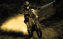 "MX pilot ""David Fernandes 113"" (skybluesky43) Tags: motocross mx1 mx2 sports motorcycling motociclismo desporto salto jump photoshop cc filters filtros creative creation art artistic action adrenalina visions fantastic wow awesome nice great 113 motor sigma 70300mm nikon d7100 lightroom 2019 march"