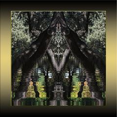 El espíritu del bosque (seguicollar) Tags: art arte artedigital texturas virginiaseguí imagencreativa photomanipulation filterforge espejo mirror árboles plantas agua reflejos verde green