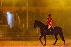 Last of the Light Brigade (meniscuslens) Tags: royal windsor horse show berkshire arena event