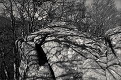 ombres (JJ_REY) Tags: ombres shadows montagnes mountains digital nikond700 place endroit lieu souvenir remember bw alsace france