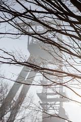 am ersten Tag des Jahres (wpt1967) Tags: 01012020 bergbau canon100300mm canon6d castroprauxel eos6d erinpark förderturm industriekultur ruhrgebiet ruhrpott sonnig winter amerstentagdesjahres coalmining headframe headgear mining wpt1967