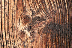 Wood Texture In Brown (gripspix) Tags: 20200101 wood holz brett plank weathered verwittert knots astig textur texture