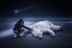 Newyear 2024 (liesbet_sanders) Tags: photoshop impagination climate change boy teenager polar bear beach nighttime night stars falling star blue dark sad sea