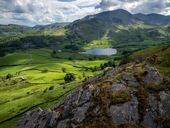 Little Langdale, Lake District (Bob Radlinski) Tags: cumbria england europe greatbritain lakedistrict lakes lingmoorfell littlelangdale littlelangdaletarn uk travel em1d5143