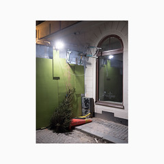 Gamla stan, Stockholm 2019 (Karl Gunnarsson) Tags: g9 panasonic20mmf17 gamlastan oldtown stockholm sweden sverige construction christmastree spruce tree trafficcone green urban floodlight kåkbrinken