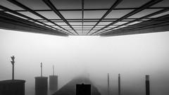 a view to emptiness / there is a river somewhere (Özgür Gürgey) Tags: 14mm 2020 altona bw d750 dockland hamburg nikon samyang architecture fog grainy lines symmetry 169